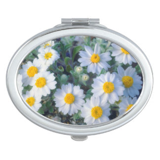 Woolly Daisy Wildflowers Vanity Mirror