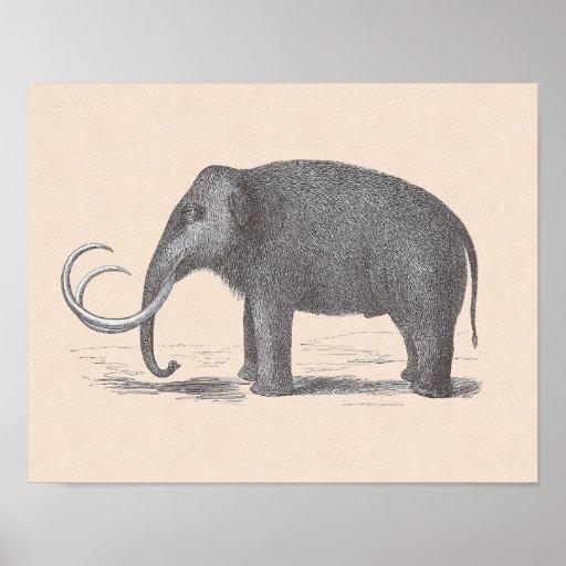 Woolly Mammoth Extinct Mastodon Funny Vintage Poster