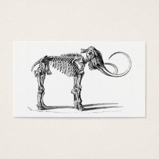 Woolly mammoth skeleton profile card
