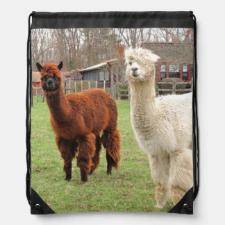 Wooly Alpacas ~ Backpack