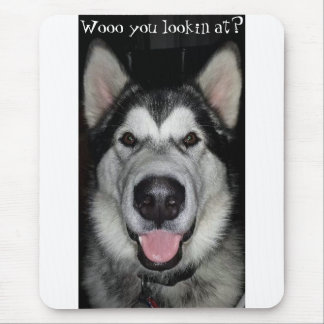 Wooo you lookin at? Alaskan Malamute mouse pad. Mouse Pad