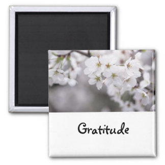 Words To Live By: Gratitude- Magnet
