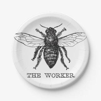 Worker Bee Bumblebee Honey Antique Illustration Paper Plate