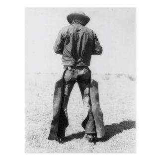 Working Cowboy Postcard
