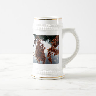 World of Reflection Beer Stein