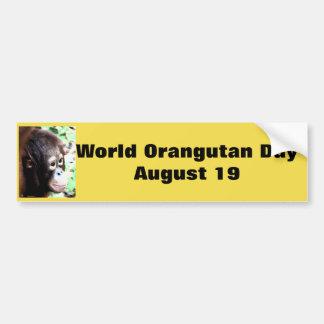 World Orangutan Day Bumper Sticker