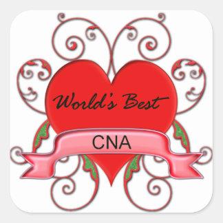 World's Best CNA Square Sticker