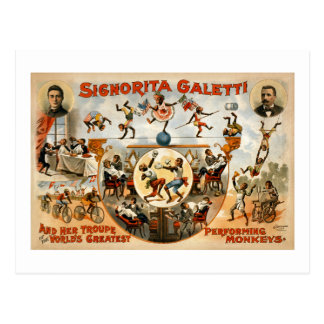 World's Greatest Performing Monkeys 1892 Postcard