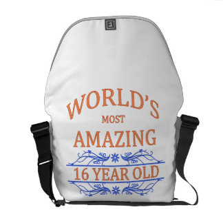 World's Most Amazing 16 Year Old Courier Bag