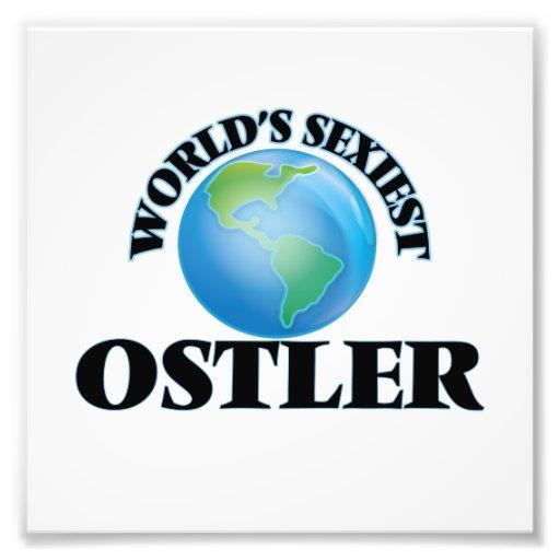 World's Sexiest Ostler Art Photo