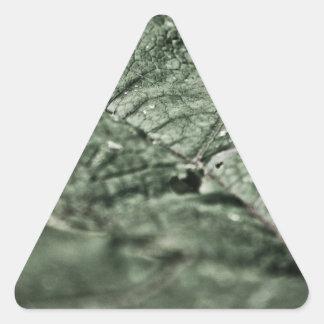 Worn green leaf stickers