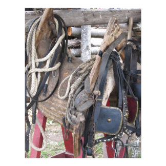 Worn leather horse bridles and bits letterhead