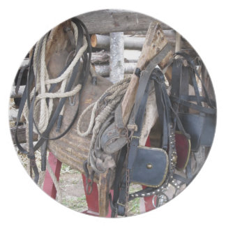 Worn leather horse bridles and bits plate