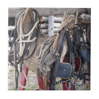 Worn leather horse bridles and bits tile
