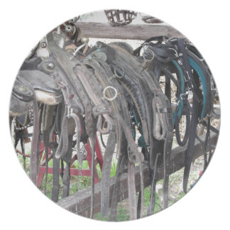 Worn leather horse bridles hanging on wooden fence plate