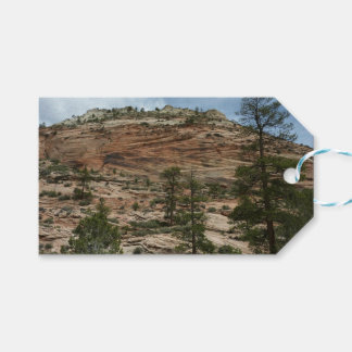 Worn Rock Walls in Zion National Park Gift Tags