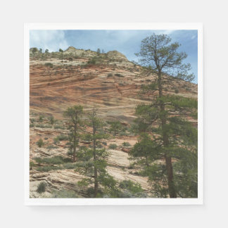 Worn Rock Walls in Zion National Park Paper Napkin