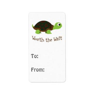 Worth The Wait Turtle