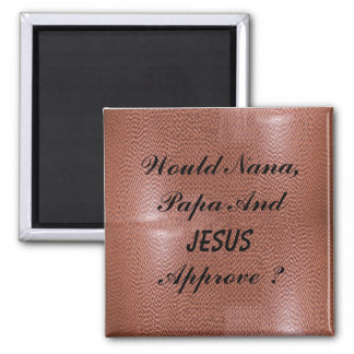 Would JESUS APPROVE-MAGNET Magnet