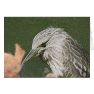 Woven Night Heron Blank Card