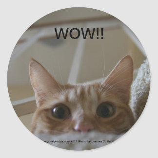 WOW!! cat sticker