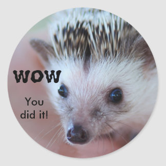 WOW, You did it! Classic Round Sticker