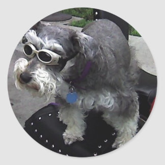 WOW-Zer Schnauzer Round Sticker