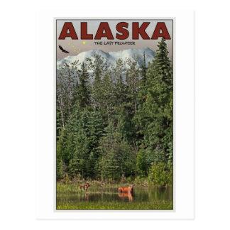 Wrangell-St Elias - The Last Frontier Postcard
