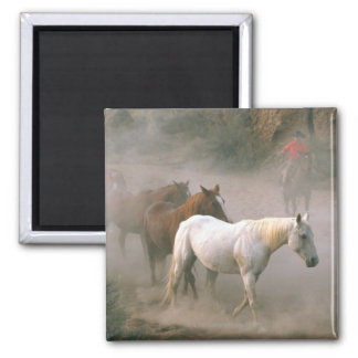 Wrangler with horses magnet
