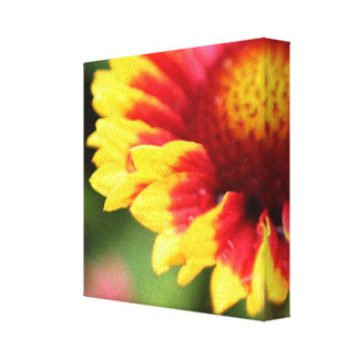 Wrapped botanical canvas flower photography print