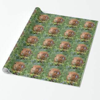 Wrapping paper ginger guinea pig personalize