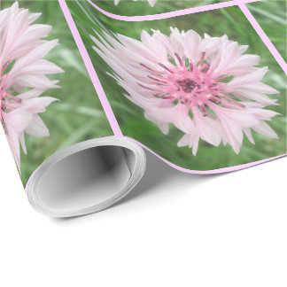 Wrapping Paper - Pink/Pink Bachelor's Button