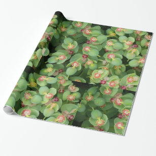 Wrapping Paper- Tiny Green Flora Wrapping Paper