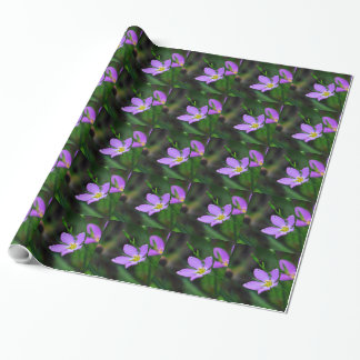 Wrapping Paper Wildflower Sabatia in Lavender