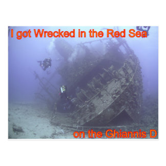 Wrecked in the Red Sea Postcard