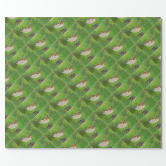 Wren Wrapping Paper