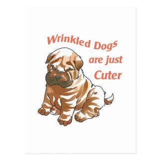 WRINKLED DOGS POSTCARD