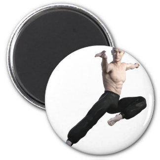 Wu Shu Form coming down to the front 2 Inch Round Magnet