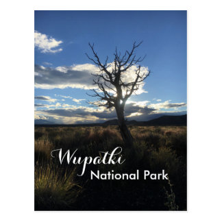 Wupatki National Park Postcard