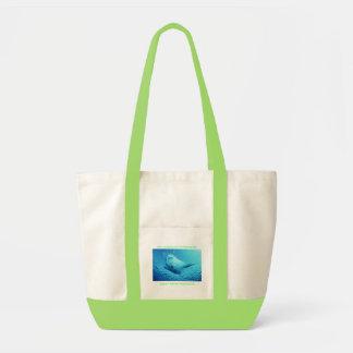 www.myspace.com/itstheirworld2 canvas bag