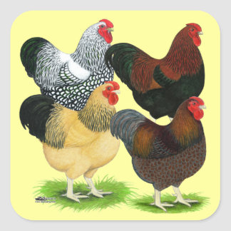 Wyandotte:  Rooster Assortment Square Sticker