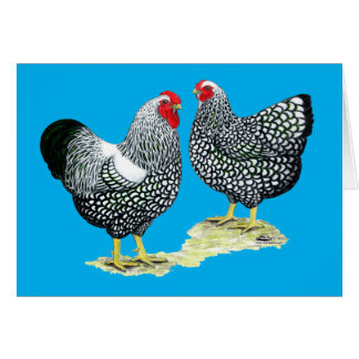 Wyandottes Silver-laced Pair Card