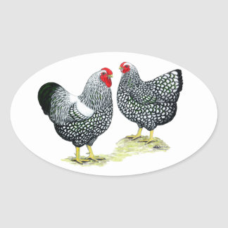 Wyandottes Silver-laced Pair Oval Sticker