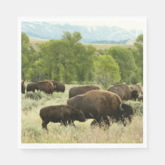Wyoming Bison Nature Animal Photography Disposable Napkins