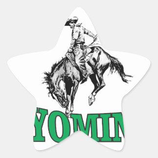 Wyoming cowboy star sticker