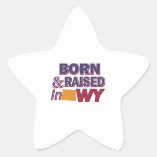 Wyoming design star sticker