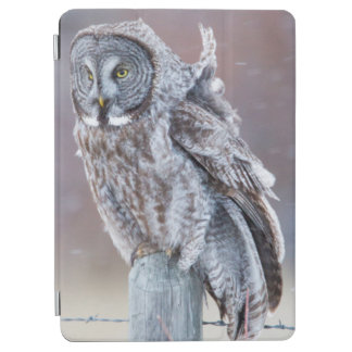 Wyoming, Lincoln County, Great Gray Owl sitting iPad Air Cover