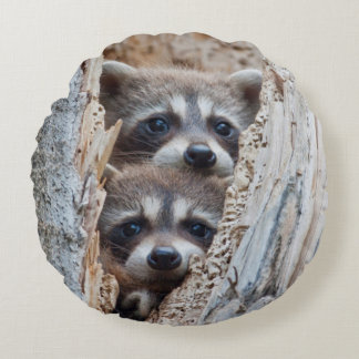Wyoming, Lincoln County, Raccoon Round Pillow