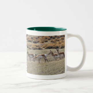 Wyoming Mug-Buffalo/Antelope Two-Tone Coffee Mug