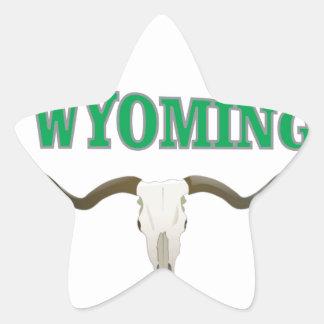 Wyoming skull star sticker